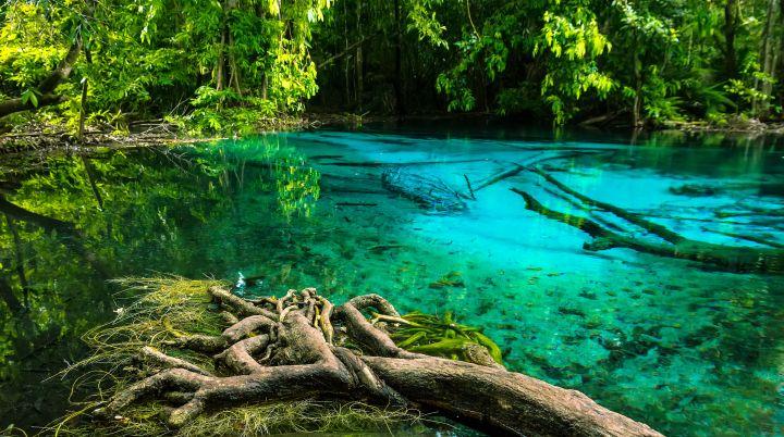 Emerald Pool + Hot Springs, Tours from Ao Nang, Krabi, Ao ...
